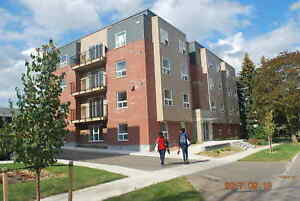"""""""NEW"""" STUDENT APARTMENTS  WITH EN-SUITE BATHROOMS * ONLY $595"""