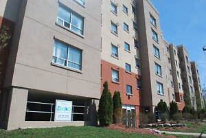4 & 5 Bedroom Student Apartments @  303 WESTCOURT PLACE