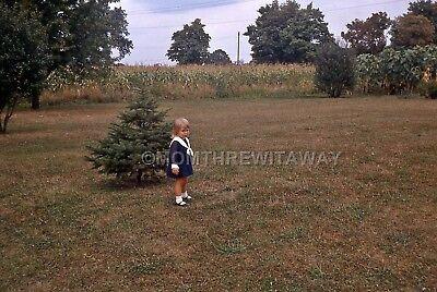 1967 COLOR SLIDE 1458 Ohio Sweet Little Blonde Girl Yard Garden Corn Field