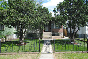 11331-88 Street - Newly Updated 2 Bed Lower Suite!!!