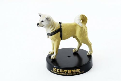 【Mint】Hachiko National Science Museum Capsule Museum Figure from JAPAN - 5073