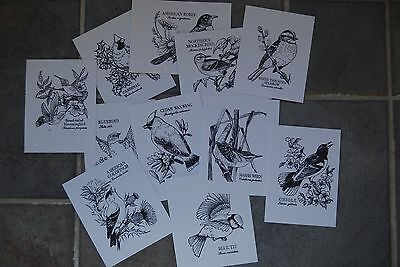 PSX stamped IMAGES ONLY Botanical Birds 11 Different Personal Exchange