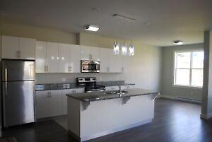 Bright Corner unit Condo - Rent-to-Own