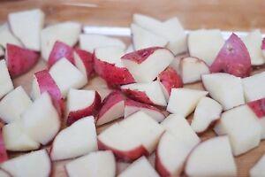 Easy Italian & Veggies Chicken Bake Recipe