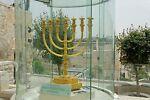 olive-tree_israel