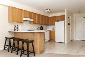 PROMO Price! 1 Bedroom Suite on Parkland Drive Available Now!
