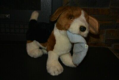 baby beagle puppies for sale  Wilmington
