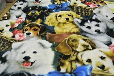 Husky Beagles Cocker Spaniels Dog Blanket Can Personalize 28x44