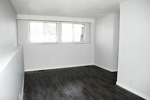 Bright, Clean and Quiet Suite - Five Minutes From Downtown!