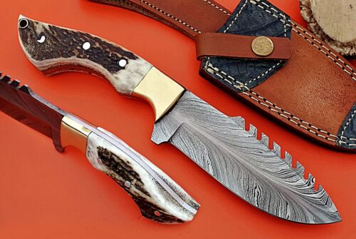 Feather pattern Damascus steel blade skinning knife, Stag Antler scale, sheath