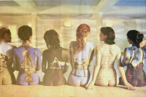"""PINK FLOYD BACK CATALOG COVERS NUDE GIRLS BACKS GIANT POSTER 35"""" X 23"""" BRAND NEW"""