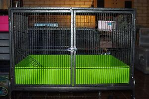 Ferret Kingdom Pet Rat / Ferret Cage Pennant Hills Hornsby Area Preview