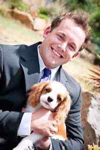 Dog sitter available Launceston Launceston Area Preview
