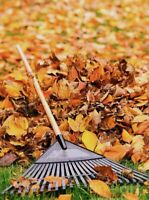 Lawn maintenance- leaf and eavestrough cleaning