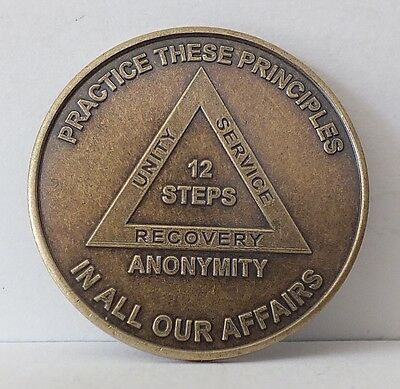 Alcoholic Recovery Principles Medallion Coin Medal Token AA Anonymous -12 Steps for sale  La Mesa