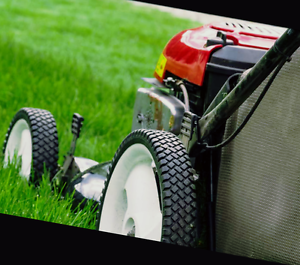 Quality Mowing Services Marsden Logan Area Preview