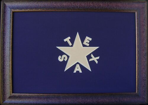 Blue Texas Flag Framed Aged De Zavala Real Rustic Western Custom Art 42