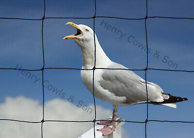 Anti Bird Netting Heavy Duty Garden Net Strong Seagull Thick Mesh 75mm 5M X 20M