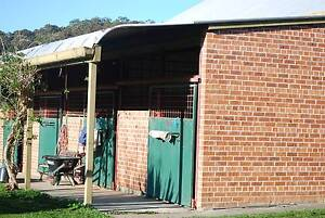 Agistment from $66- Parkview Equestrian Centre, Jilliby Jilliby Wyong Area Preview