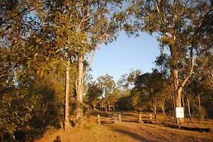 Treechange Paradise Horse Camp Bundaberg Surrounds Preview