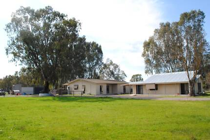 20 Acres 2 houses Sheds on channel only 6km from shepparton. Shepparton East Shepparton City Preview