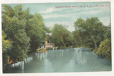 Codorus Creek  Ymca Grounds Nr York Pa Vintage Pennsylvania Postcard