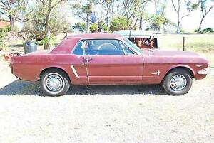 1965 Ford Mustang Coupe Bute Barunga West Preview