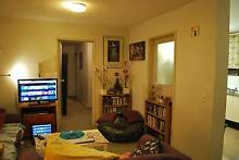 Flatmate wanted! $205pw Carlton Nth from May 1st Carlton North Melbourne City Preview