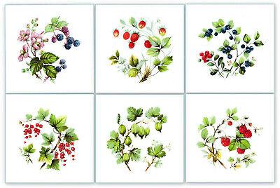 15x15 Fliesen Dekor Beeren Obst Erdbeere Blaubeere Himbeere (tile berry fruit)
