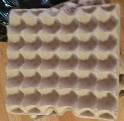 25 New 30ct Egg Flats Trays Cartons Hobby School Crickets Etc.