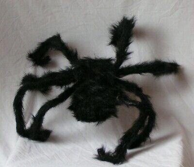 Augen Halloween Dekoration (Halloween Spinne Auge)