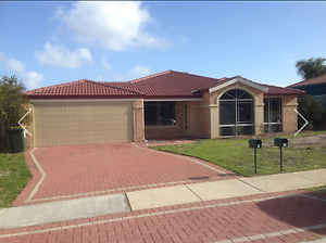 **BREAK LEASE ** 4x2 house BANKSIA GROVE Banksia Grove Wanneroo Area Preview