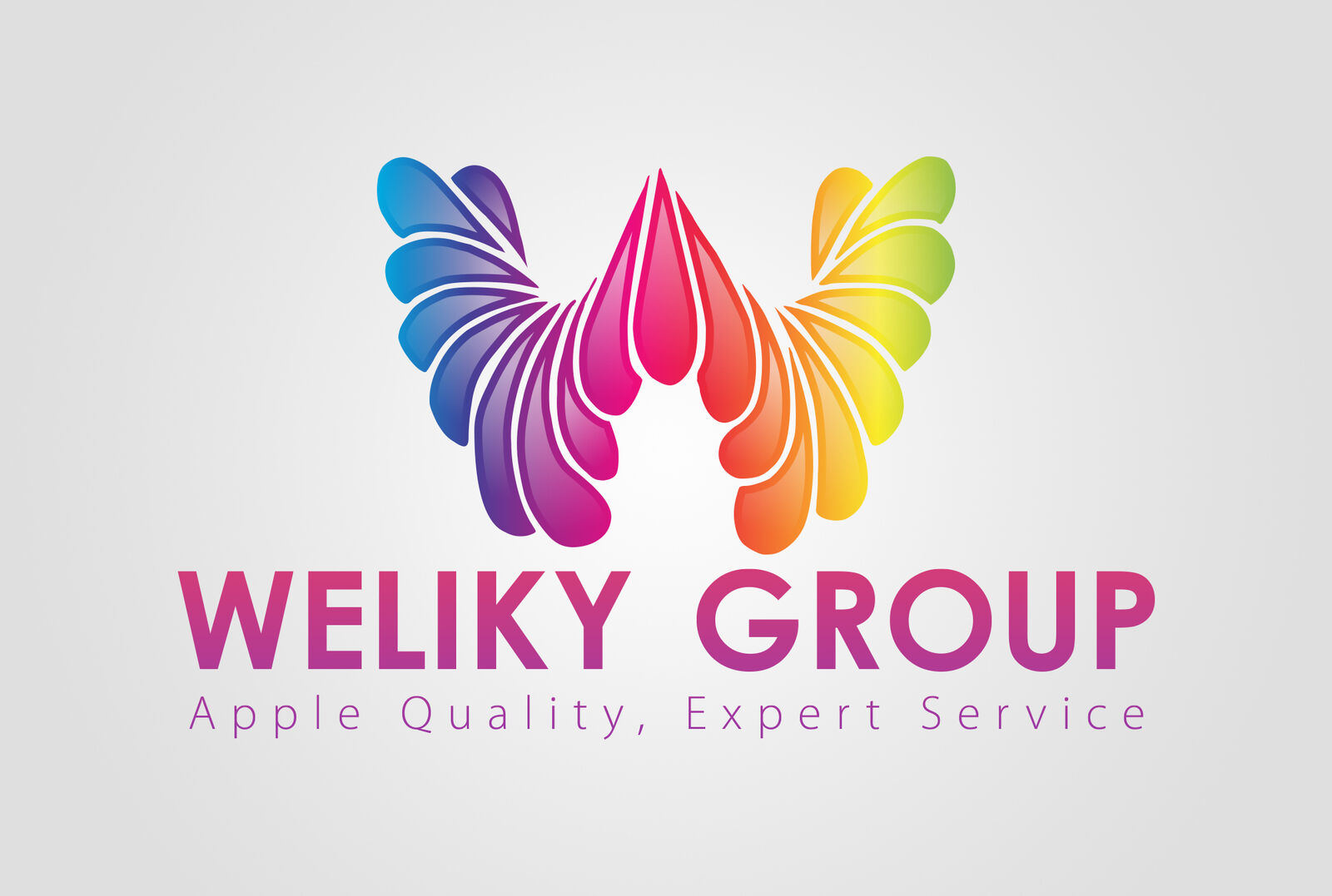 Weliky Group LLC