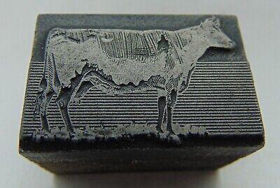 Printing Letterpress Printers Block Cow Animal In Field