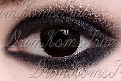 Kontaktlinse farbig Schwarz / verrückt ,Kostüm,Fantasie/ gültig 6 Monate (Kostüme Farbigen Augen Kontakte)