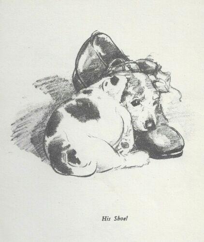 Fox Terrier Puppy - Vintage Dog Print - 1940 Diana Thorne