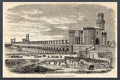 1877 engraving ~ Engineering Works for the Irrigation of Egypt