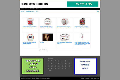 Sports Goods Store Website - Hosting - Articles - New Domain