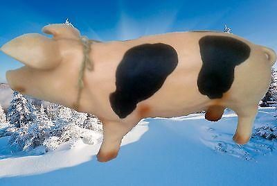Sparschwein Supersau ohne Schloß + Schlitz Weihnachts- Geschenk Vintage Deko