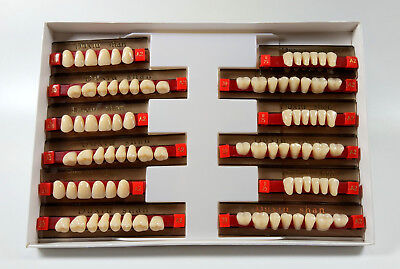 6set168pc Dental Complete Denture False Tooth Fake Acrylic Resin Teeth A2 Color