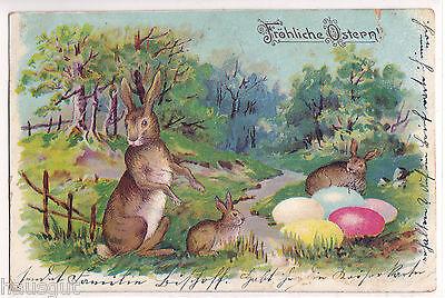 Fröhliche Ostern Hasen Ostereier AK 1906