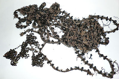 Antique Victorian Mourning Black Beaded Cord Trim Edging Pieces Lot T