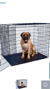Extra Large Dog Crate - in perfect condition