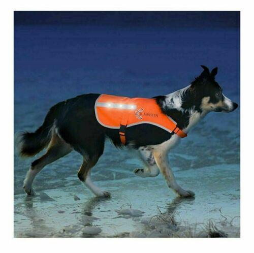 Illumiseen LED Dog Vest 2.0 Orange Safety Jacket with LED USB charger 17 modes