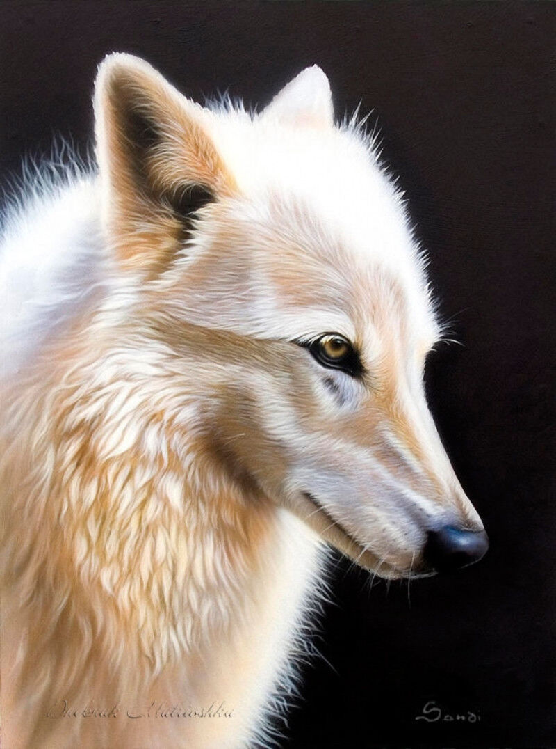 """Angry Wolf Stare 16x20/"""" DIY Acrylic Paint By Number kit Oil Painting On Canvas"""