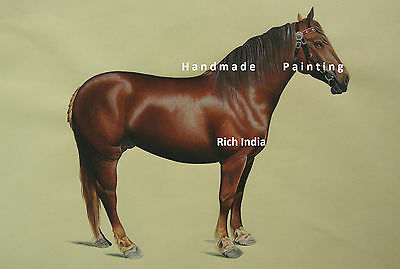 Arabian Horse  Realistic Painting Water color Handmade Artwork Race court ??????