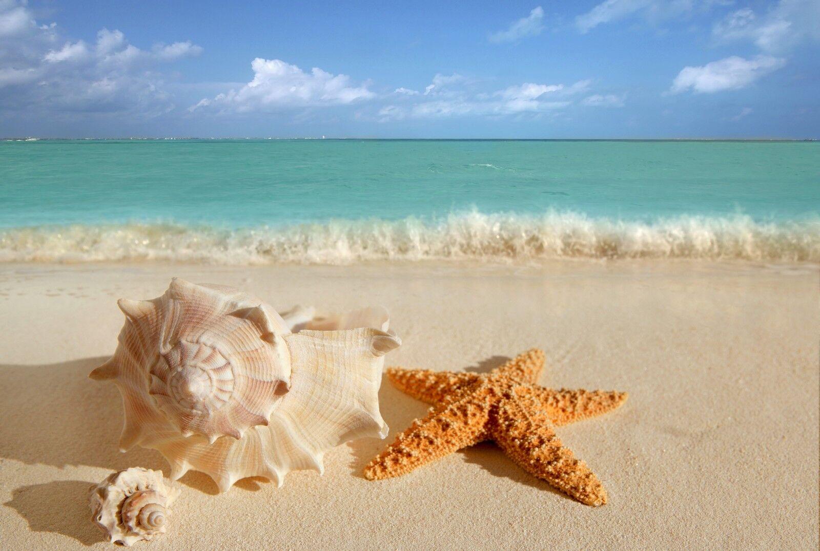 beach-home333
