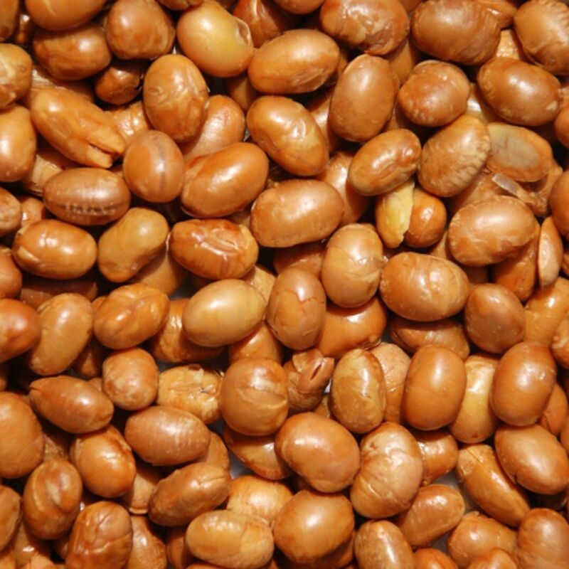 Organic Soy Nuts Roasted Salted by It