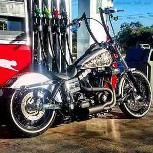 Custom Harley Singleton Singleton Area Preview