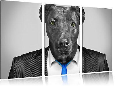 Schwarz Auf Schwarzen Anzug (Labrador im Anzug schwarz/weiß auf 3-Teiler Leinwandbild Wanddeko Kunstdruck)